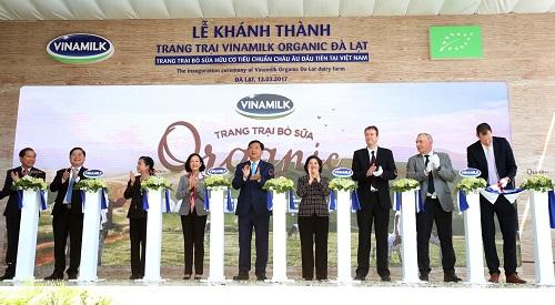 Công ty tổ chức lễ khánh thành giá rẻ tại Lâm Đồng I Khánh thành trang trại bò sữa Organic