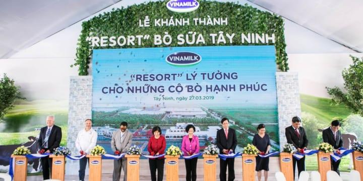 Công ty tổ chức lễ Khánh thành chuyên nghiệp tại Tây Ninh I Lễ khánh thành Resort Bò sữa Vinamilk